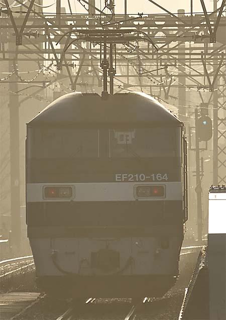 EF210_20121224_1.jpg