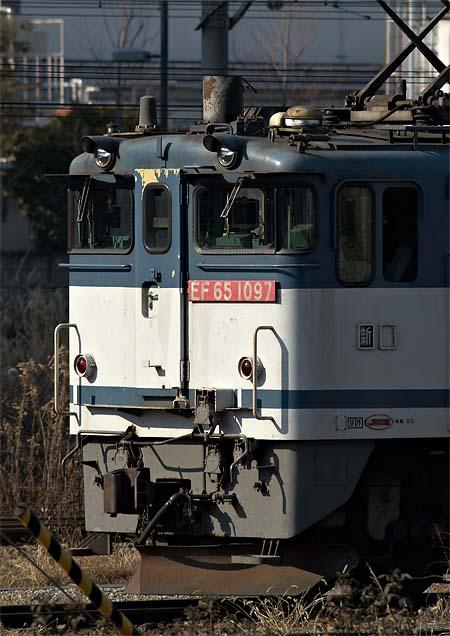 yokogao_20111231_6.jpg