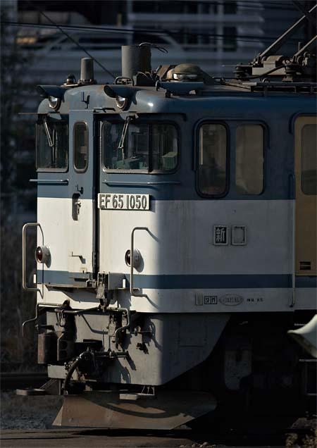 yokogao_20111231_7.jpg
